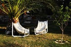 两把扶手椅子在庭院里在树下 图库摄影