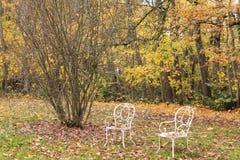 两把椅子在森林里在秋天 免版税库存图片