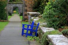 两把蓝色椅子在一个环境美化的庭院里 免版税库存照片