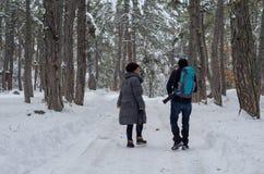 两摄影师在森林在冬天 库存图片