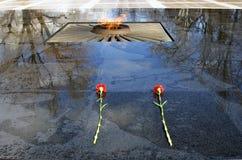 两支红色康乃馨投入了花岗岩表面湿在雨以后 免版税库存图片