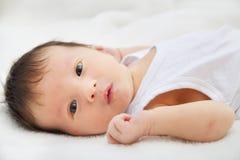 两星期年纪男婴 免版税库存照片