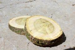 两木头两 免版税图库摄影