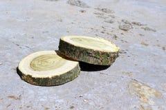 两木头 免版税库存照片