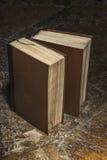 两本老棕色书 图库摄影