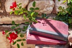 两本葡萄酒书有花背景 免版税库存照片