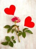 两朵猩红色心脏和桃红色玫瑰 免版税图库摄影
