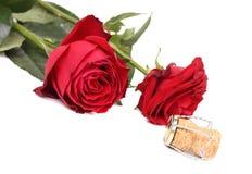 两朵玫瑰和黄柏特写镜头。 库存照片
