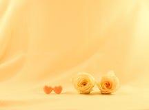 两朵玫瑰花和桃红色心脏 库存图片