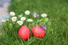 两朵红色复活节彩蛋和花 免版税库存照片