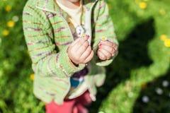 两朵花在儿童` s手上 免版税库存照片