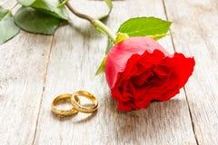 两朵金黄圆环和红色玫瑰 库存图片
