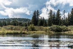 两条在水附近的河自然狂放的风景Canada安大略湖在阿尔根金族国家公园 库存图片