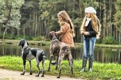 两条女孩和狗在公园 免版税图库摄影
