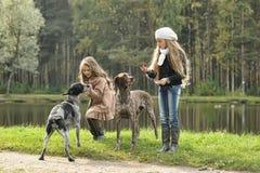 两条女孩和狗在公园 库存照片