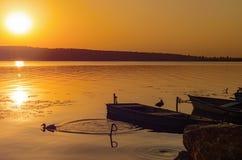 两条小船和两只鸭子在湖的岸附近以日落为背景 免版税图库摄影