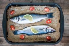 两条未加工的鲈鱼鱼用柠檬和西红柿在平底锅 库存照片