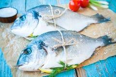 两条未加工的dorada鱼用柠檬、葱、西红柿和海盐 免版税库存照片