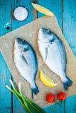两条未加工的dorada鱼用柠檬、葱和西红柿 免版税图库摄影