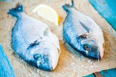 两条未加工的dorada鱼用柠檬 免版税库存图片