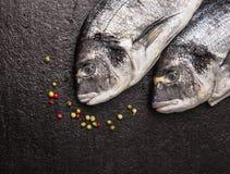 两条未加工的dorado鱼用在黑暗的石背景,顶视图的干胡椒 库存照片