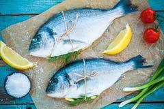 两条未加工的dorado鱼用柠檬、葱和西红柿 库存照片