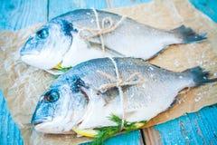 两条未加工的dorado鱼用柠檬和莳萝 免版税库存照片