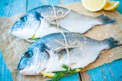 两条未加工的dorado鱼用柠檬和莳萝 库存照片