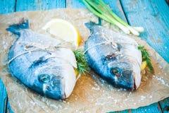 两条未加工的dorado鱼用柠檬,葱 库存照片