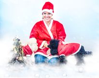 两条甜长卷毛狗陪同的圣诞节成套装备的快乐的少妇 库存照片