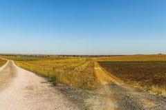 两条路在乡下 免版税库存照片