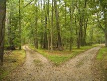 两条道路 免版税图库摄影