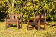 两条长凳在公园、秋天和叶子 图库摄影