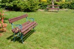 两条长凳在公园 库存图片