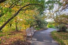 两条长凳在公园 免版税库存图片