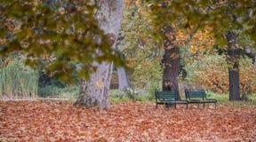 两条长凳在秋天的公园 免版税库存照片