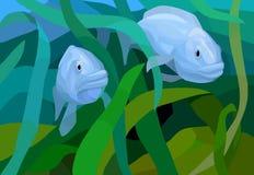 两条鱼在海 库存图片