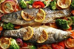 两条鲜美被烘烤的鲈鱼鱼与装饰 库存照片