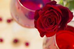 两杯与一朵红色玫瑰的红葡萄酒 图库摄影