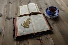 两杯开放圣经和茶 库存图片