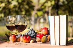 两杯红葡萄酒、书和秋天果子 库存照片