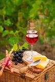 两杯红葡萄酒用面包、肉、葡萄和乳酪在Th 免版税库存图片