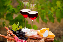 两杯红葡萄酒用面包、肉、葡萄和乳酪在Th 免版税库存照片