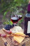 两杯红葡萄酒用面包、肉、葡萄和乳酪 免版税库存照片