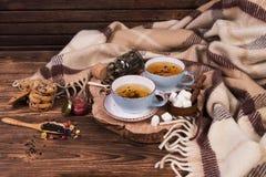 两杯茶与格子花呢披肩的在桌上 秋天来临 温暖的背景用茶和格子花呢披肩 图库摄影