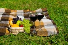 两杯酒和新鲜水果篮子在笼子的格子花呢披肩站立 图库摄影