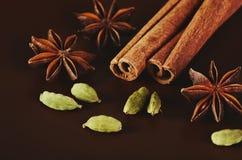 两根肉桂条、三八角和一个豆蔻果实在褐色 免版税库存照片