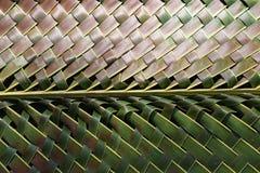 两棕榈叶工艺品口气  免版税库存照片