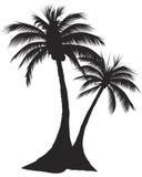 两棕榈 向量例证