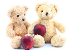 两棕熊和新鲜的红色苹果 库存图片